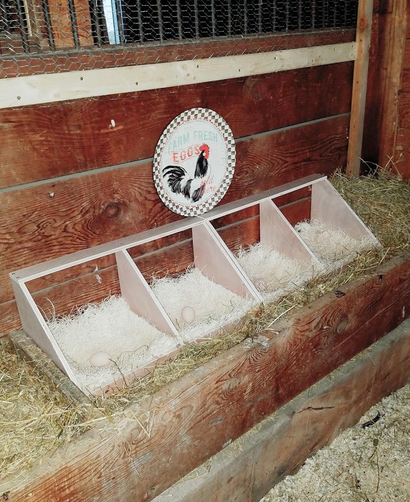 nesting boxes ceramic eggs
