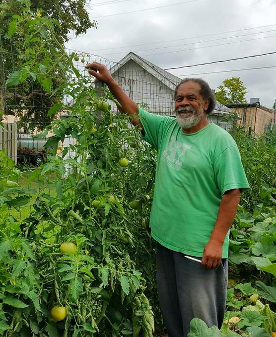 your neighbor's garden Peni Mounga