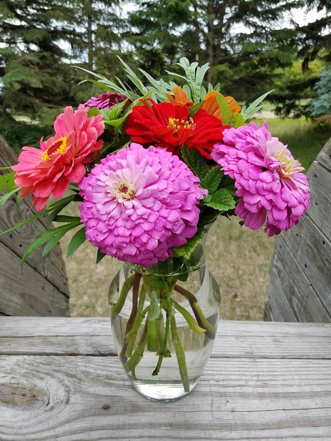 zinnia bouqet garden flowers